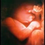 Zwangerschap week 19