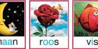 Maan-roos-vis