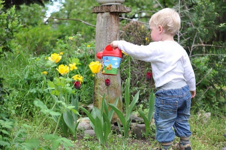 Een babyvriendelijke tuin: hoe doe je dat?