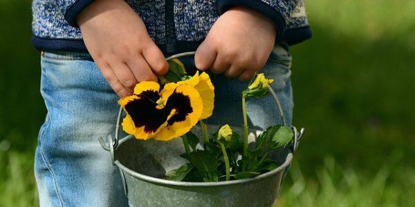 Lekker tuinieren met je kinderen