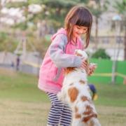 ontmoeting met een hond