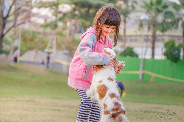 Mijn kind is bang voor honden, wat nu?
