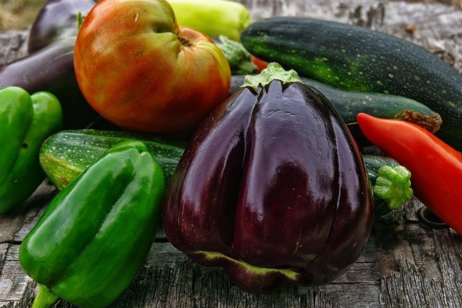 Babyhap met aubergine