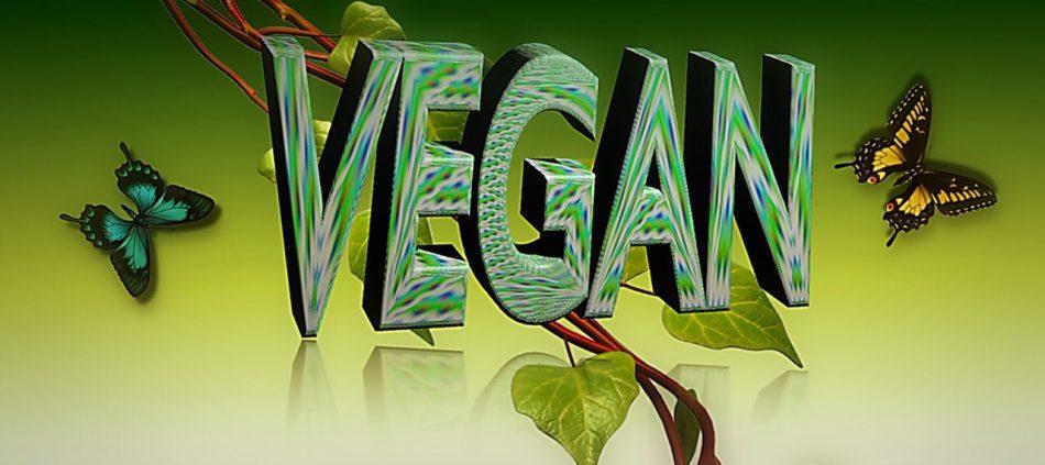 vegan voor de baby