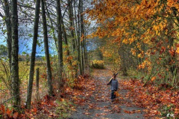 De (levens)lessen van de herfst