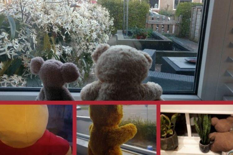 De beren en andere speurtochten