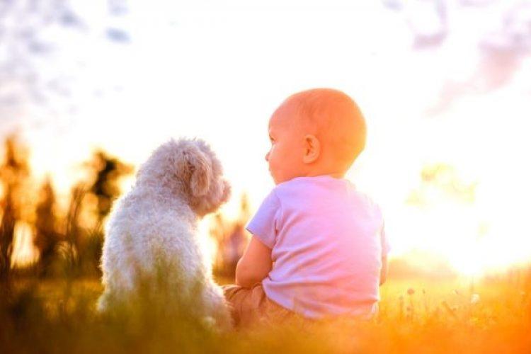 Je baby en de hond