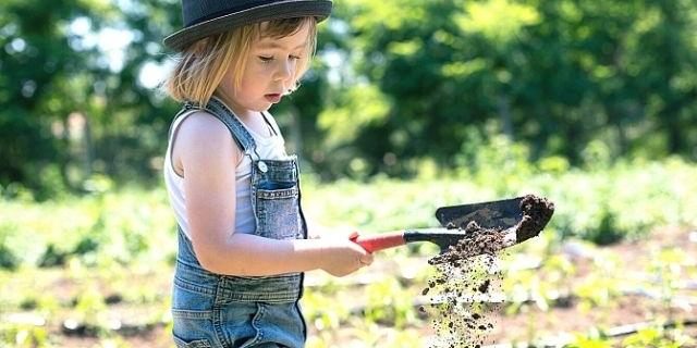 moes tuinieren